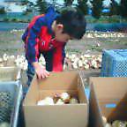 20060409tetsudai.jpg