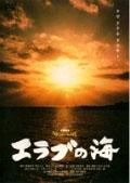 20080215dvd.jpg