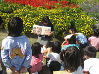 20081016yomu1.jpg