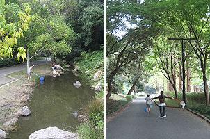 20081103sanaruko.jpg