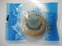 20081116kashi.jpg